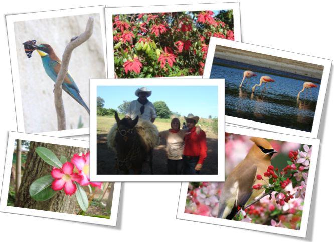 Photos du Paraguay