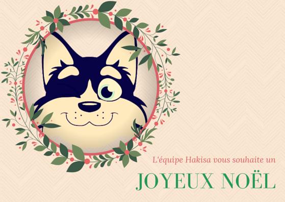 Carte de voeux Hakisa Noël 2015